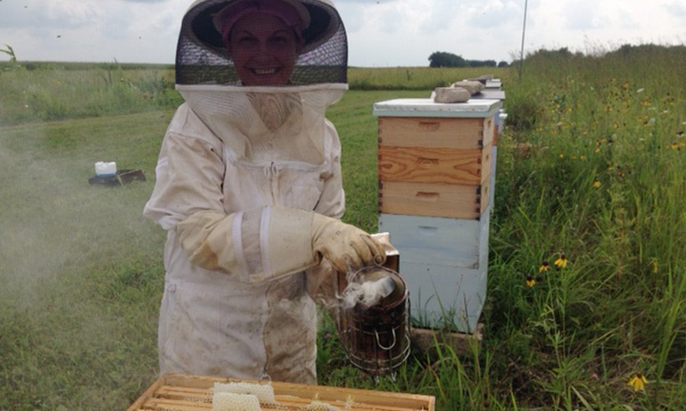 bee apiary